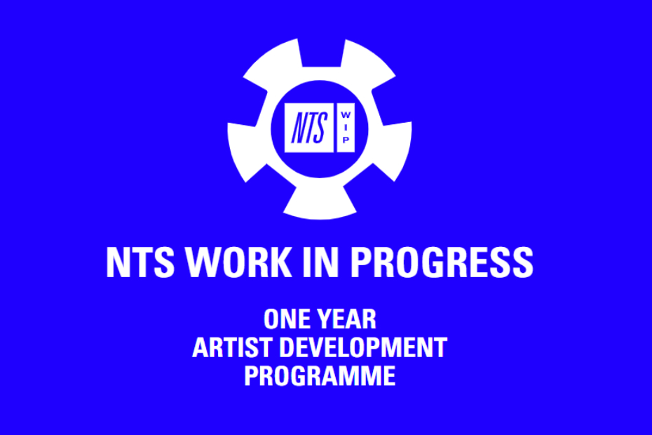 Программа поддержки музыкантов NTS WIP