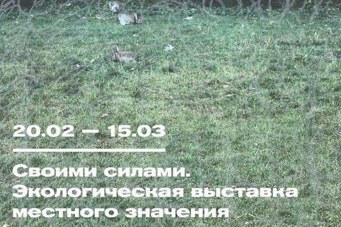 Выставка «Своими силами. Экологическая выставка местного значения».