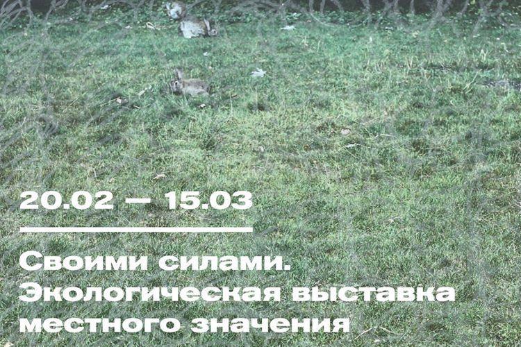 Александра Кузнецова представит инсталляцию наэкологической выставке