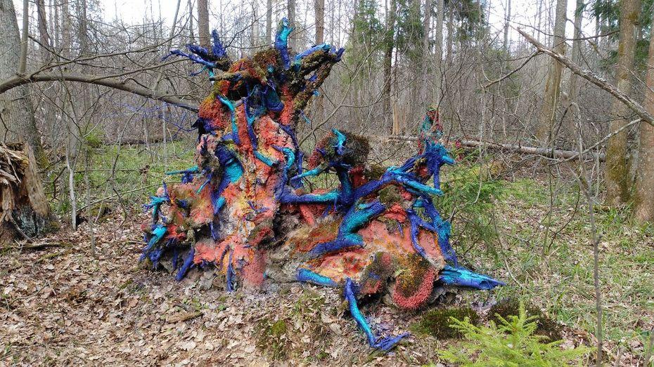 Дунаева Анастасия— «Кусок накуске», объект