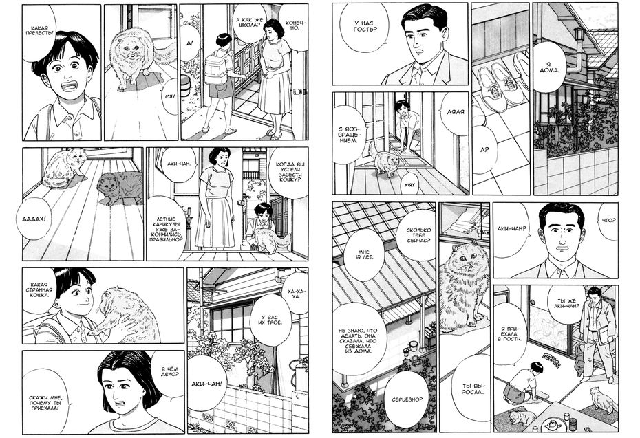 Танигучи Дзиро, «Уход запсом»